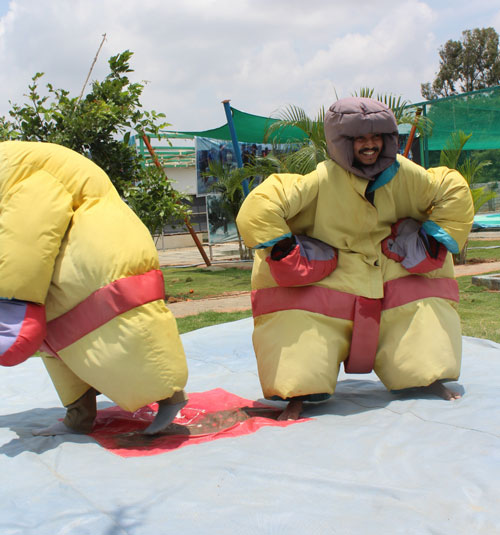 Sumo fights